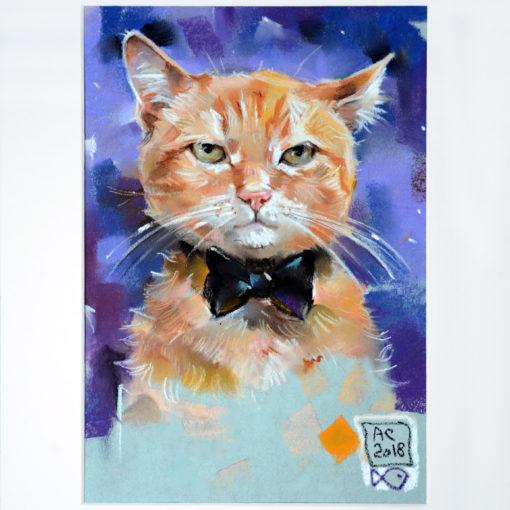 кот, портрет кота, пастель, картина, сергееваарт