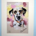 продажа картины, картина пастелью, портрет питомца, портрет собаки