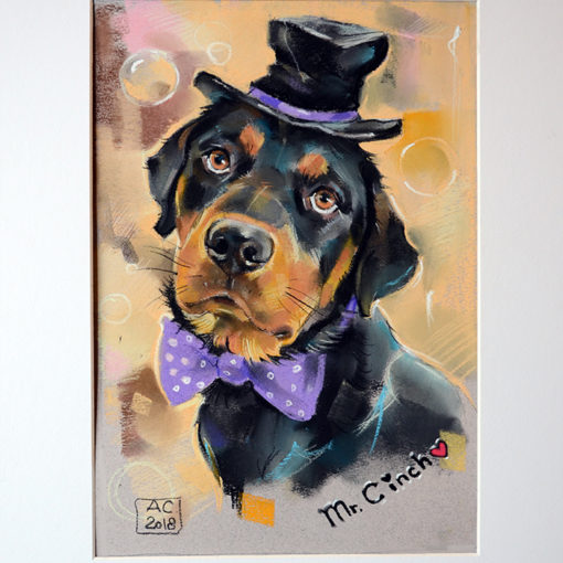 портрет собаки, ротвейлер, заказ портрета питомца