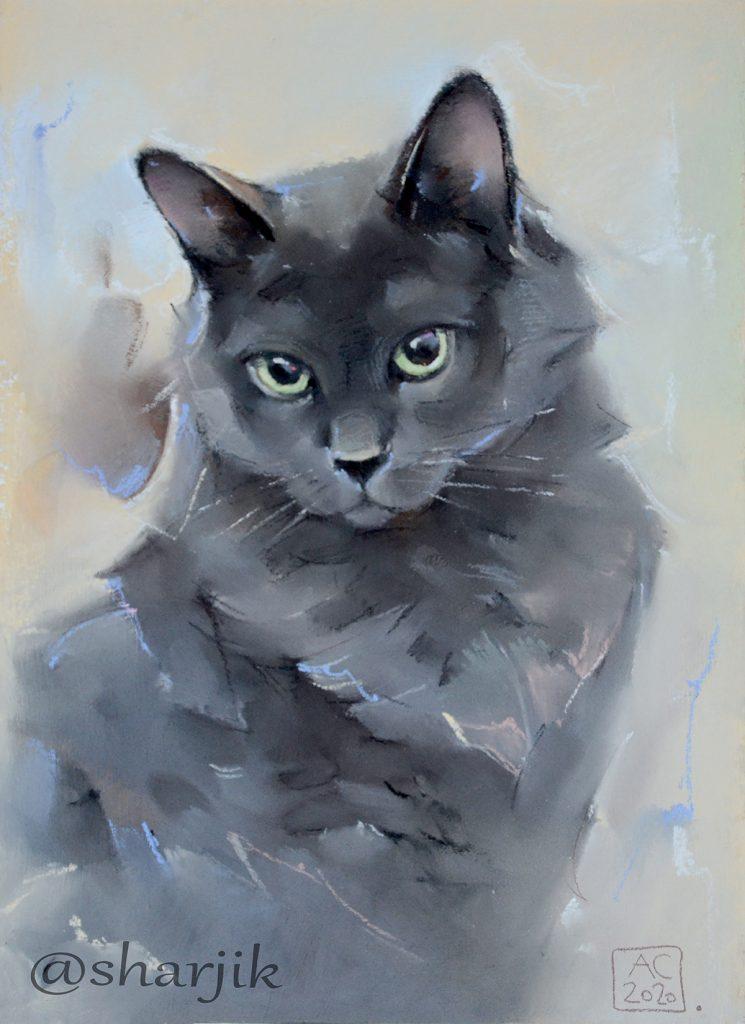 Серый кот портрет, зеленоглазый кот, заказать портрет кошки по фотографии