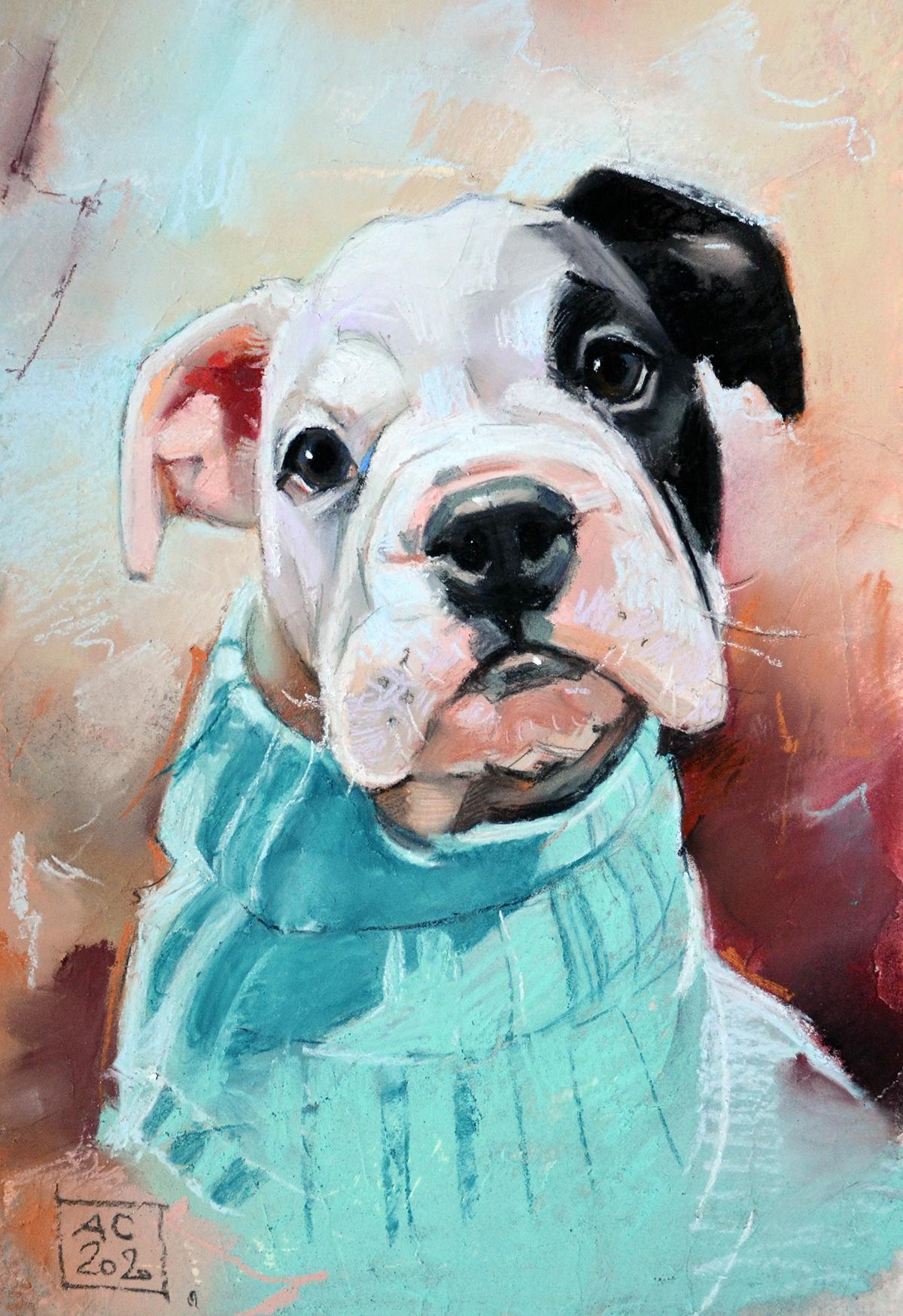 Портрет бульдога, рисунок щенка бульдога заказать