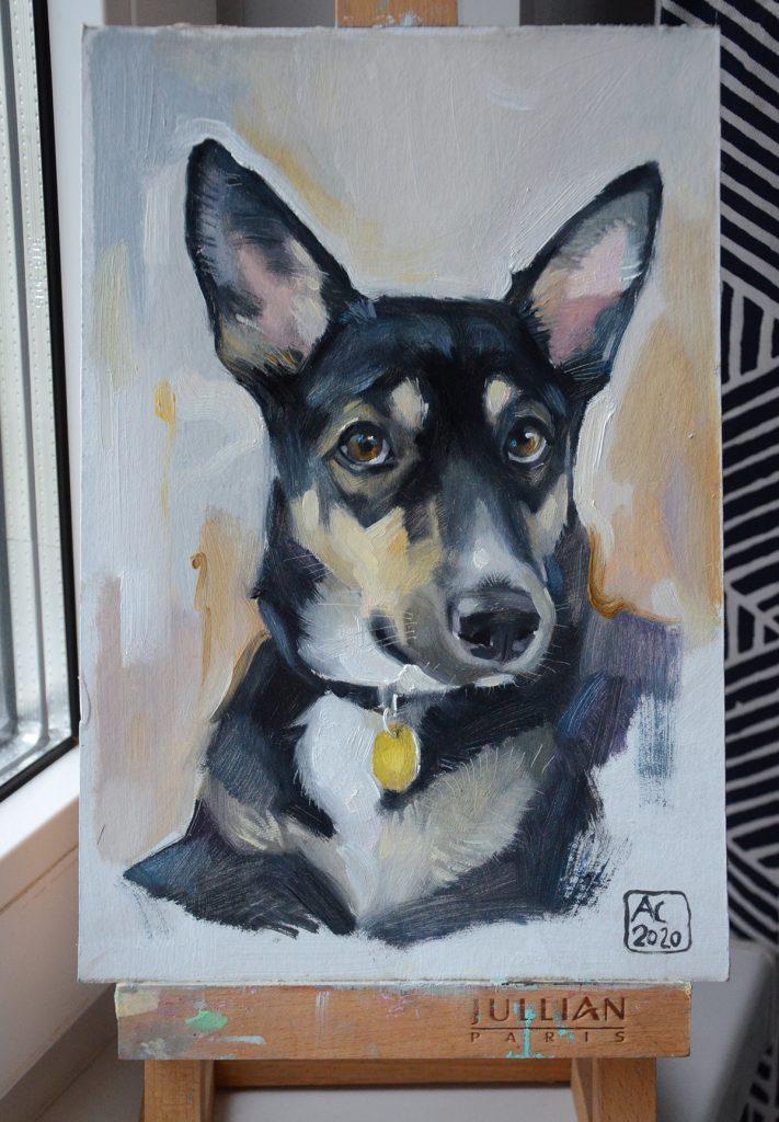 овчарка, собака бобака, портрет собаки, купить картиу у художника, нарисовать свою собаку