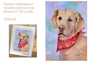портрет золотистого лабрадора, портрет крупной собаки, рисунок ретривера
