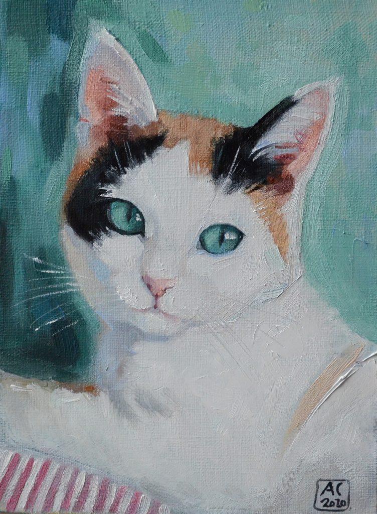 Портрет кошки, портрет кошки маслом, портрет на холсте